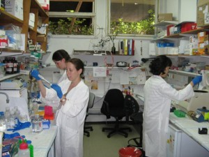 Einat Vitner and colleagues working in the lab at the Weizmann Institute of Science